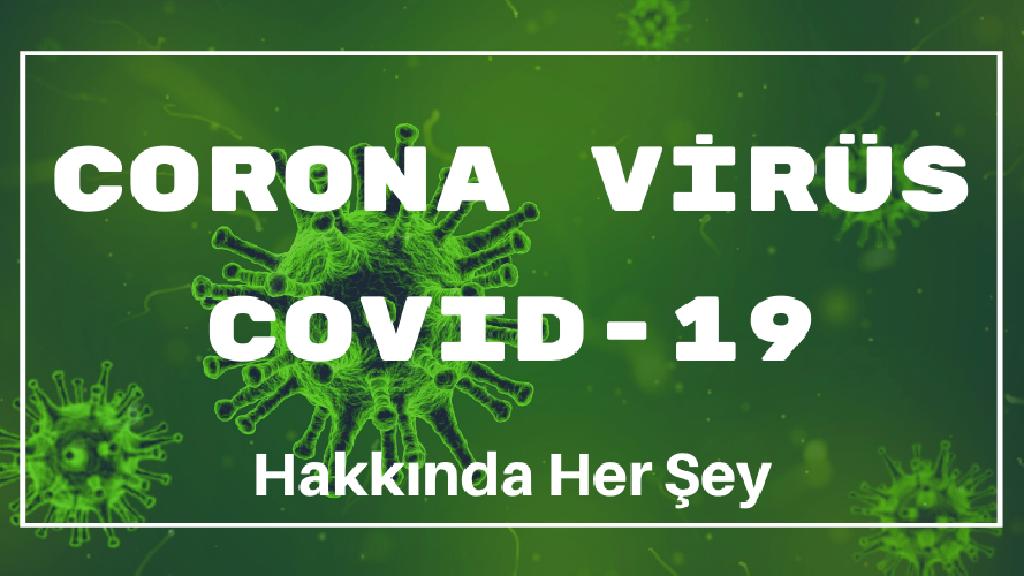 Dünyada ve Türkiye'de Corona Virüs COVID-19